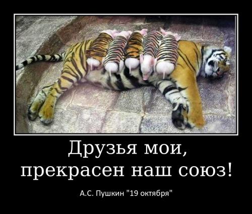 Меньщикова Т.А._1