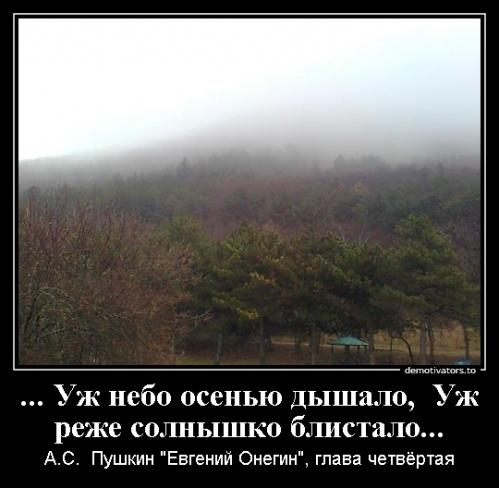 Коломыцева К.Н._1