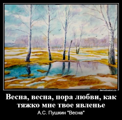 Бакурова И.А._1