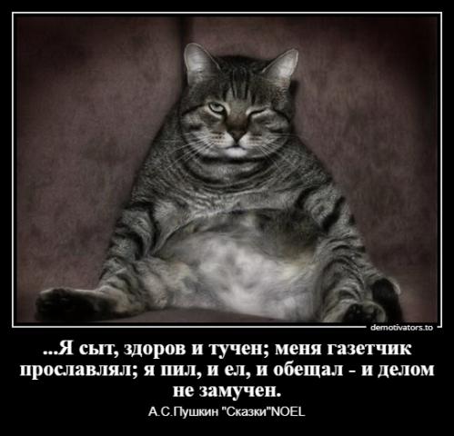 Ильященко С.О._1