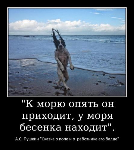 Раскина С.А._1