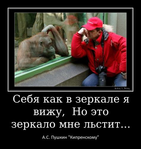 Меньщикова Т.А._2