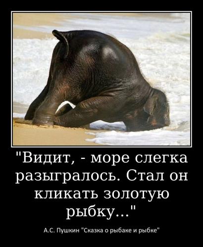 Раскина С.А._2