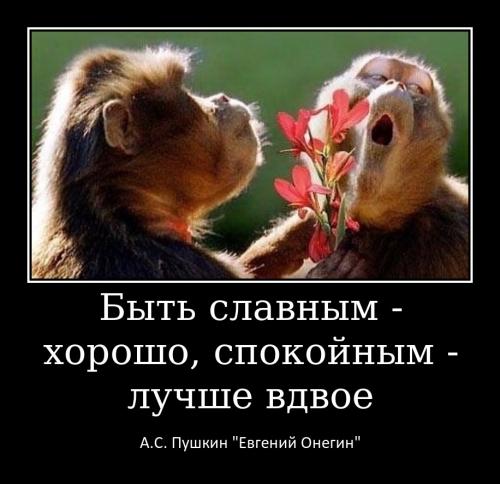 Ульянченко Н.А._3