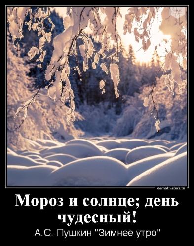 Коломыцева К.Н._3