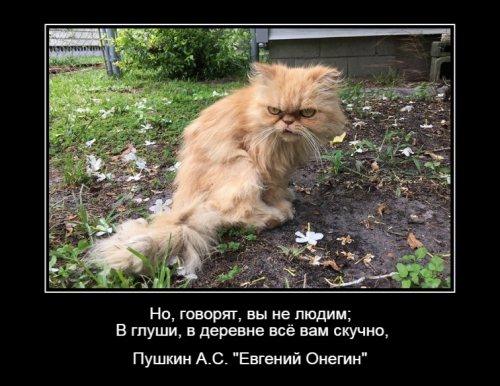 Страх Г.М._3
