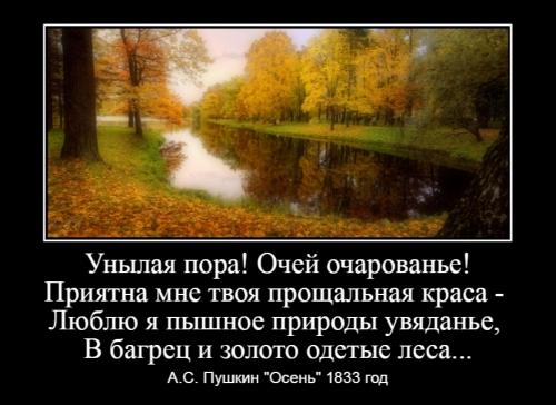 Куликова С.В._3
