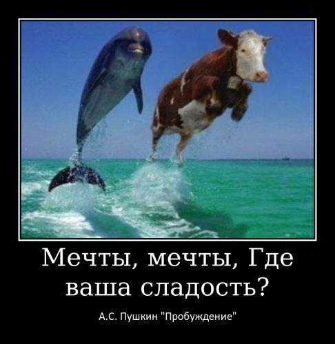 Меньщикова Т.А._4