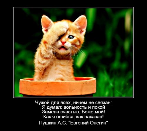 Страх Г.М._4