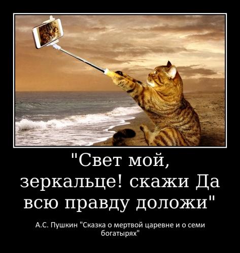 Раскина С.А._4