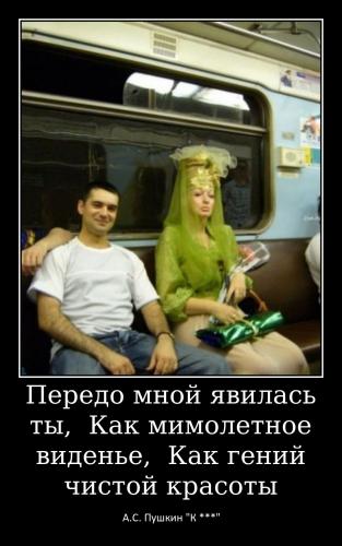 Меньщикова Т.А._5